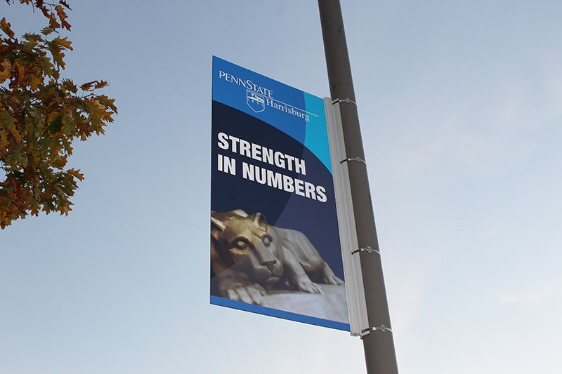 university pole banner sign